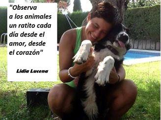 Imagen de Animales: El Amor que les Restas es el Amor que te Quitas