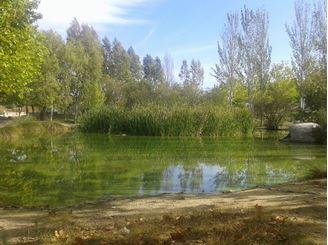 Imagen de Rutas Gastronomicas Sierra Oeste Madrid