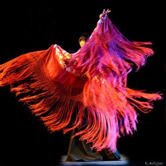 Imagen de Escuela Flamenca Chùa Alba