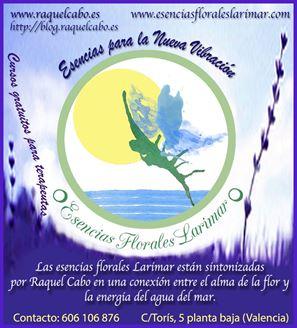 Imagen de Esencias Florales Larimar