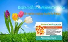 Imagen de Bio Neuro Emocion&Coaching