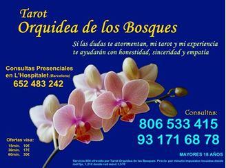Imagen de tarot orquidea de los bosques