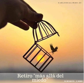 Imagen de MAS ALLÁ DEL MIEDO