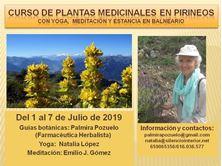 Imagen de CURSO DE PLANTAS MEDICINALES EN PIRINEOS