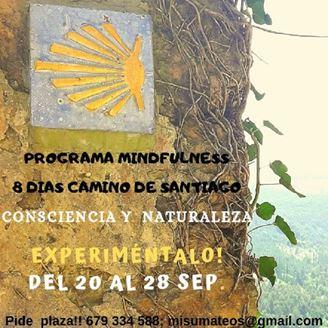 Imagen de CONSCIENCIA Y NATURALEZA - 8 DIAS CAMINANDO A SANTIAGO . PROGRAMA DE MINDFULNESS