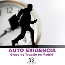 Imagen de AUTO EXIGENCIA Grupo de Trabajo