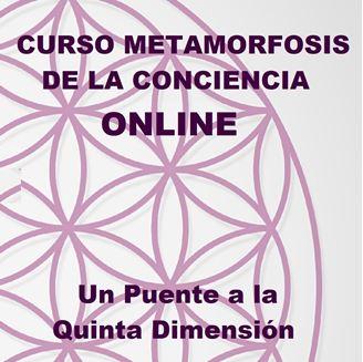 Imagen de METAMORFOSIS DE LA CONCIENCIA